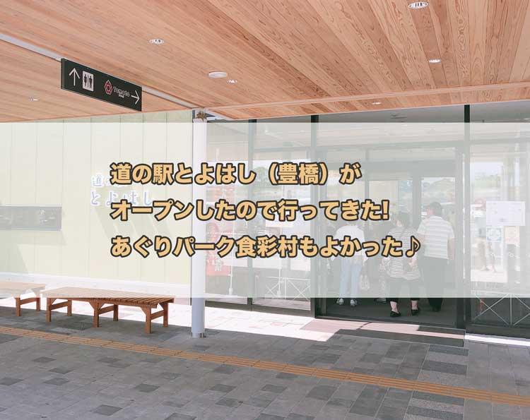道の駅とよはし(豊橋)がオープンしたので行ってきた!あぐりパーク食彩村もよかった♪